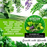 15 Culinary Herb Seed Vault - Heirloom and Non