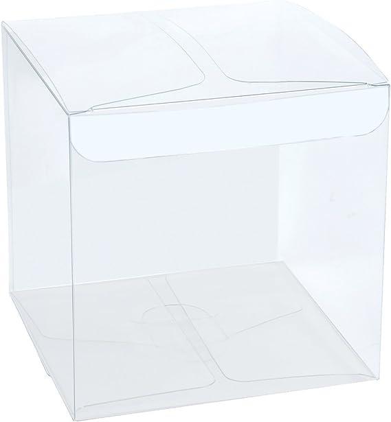 RUSPEPA Cajas Transparentes del Pet Doméstico 10pcs / Cajas de ...