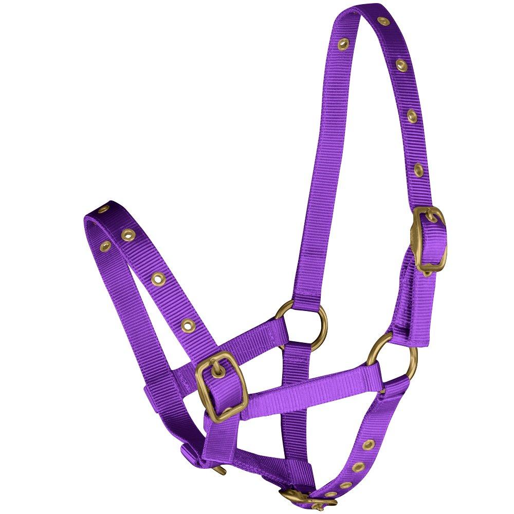tigerbox Purple Soft Nylon Fully Adjustable Foal Headcollar