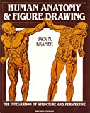 Human Anatomy and Figure Drawing : The Integration of Structure and Perspective, Kramer, Jack, 0442247362