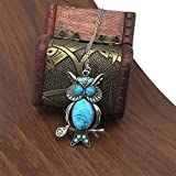 Sinfu Necklace Women Owl Pendant Long Necklace Sweater Chain Jewelry