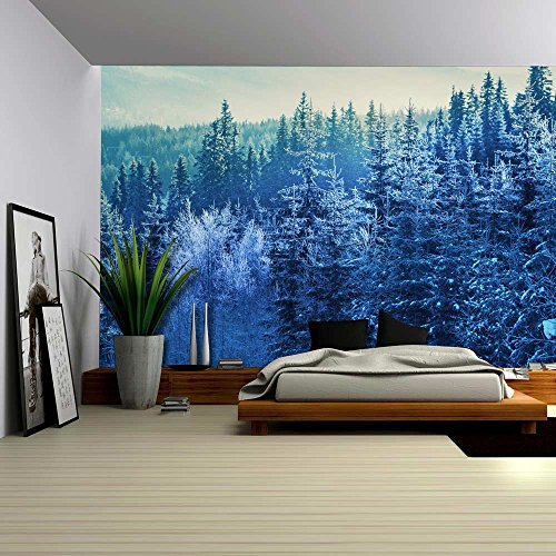 An Aerial View of a Winter Time Mountain Wall Mural
