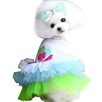 BBsmile Ropa Perro pequeño Perro Mascota Ropa de Invierno ...
