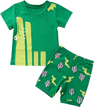 2Pcs Toddler Kids Baby Boys Girls Dinosaur Cartoon Print Tops Shorts Outfits Set Pollyhb Boy Girl Clothes Set 1-7 Years