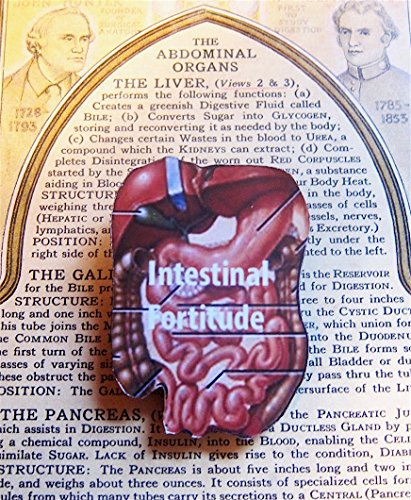 Intestinal Fortitude Pin, Handcrafted Wood, Jewelry Brooch, Medical School Graduation Gift, Nursing School Graduation Gift, Medical Textbook