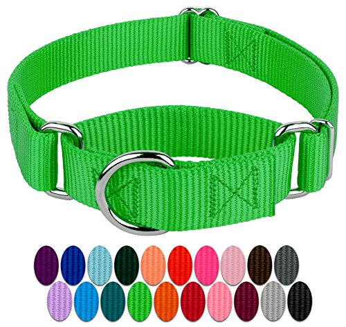 (Country Brook Design | 1 Inch Martingale Heavyduty Nylon Dog Collar - Hot Green - Medium)