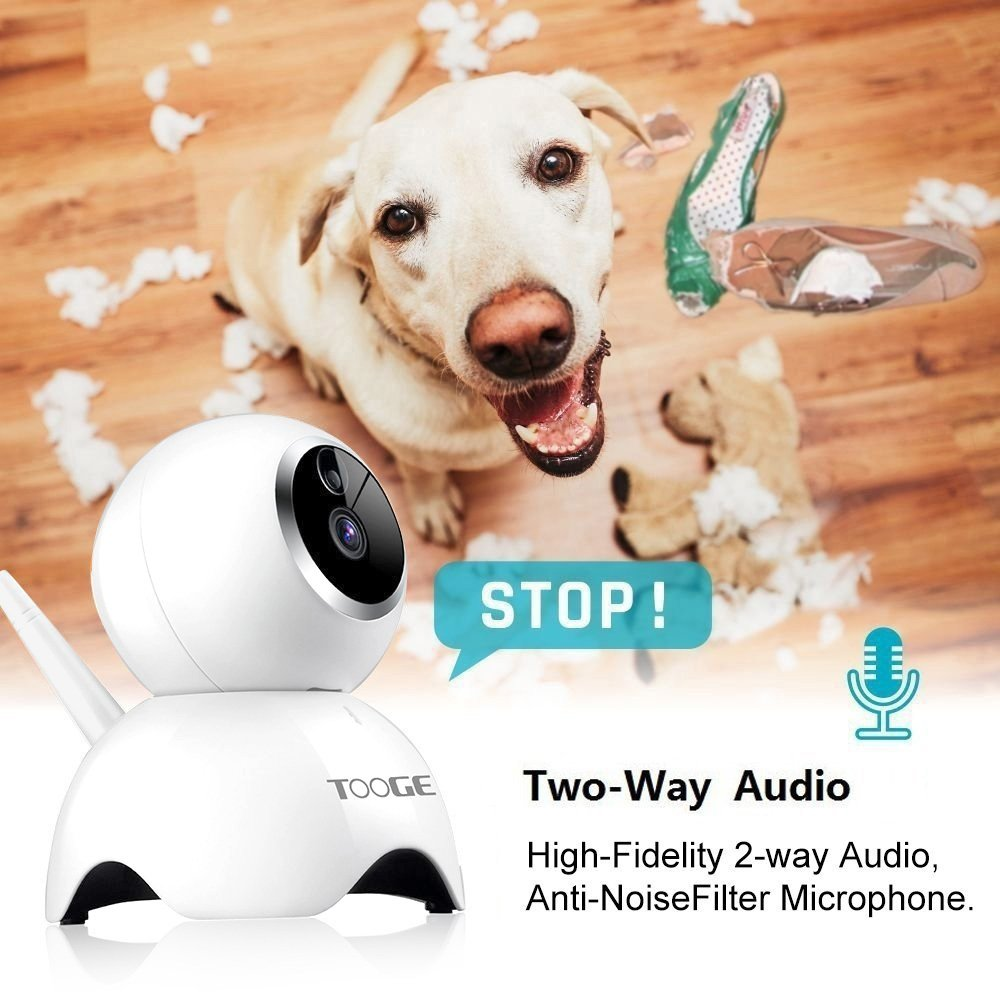 TOOGE Pet Camera, Dog Camera FHD Pet Monitor Indoor Cat Camera Night Vision 2 Way Audio and Motion Detection(Updated) by TOOGE (Image #3)