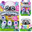 Hatchimals Colleggtibles Season 1 4-pack + bonus, 2-pack + nest, 1 blind SET (random assortment) Collectibles from Spin Master