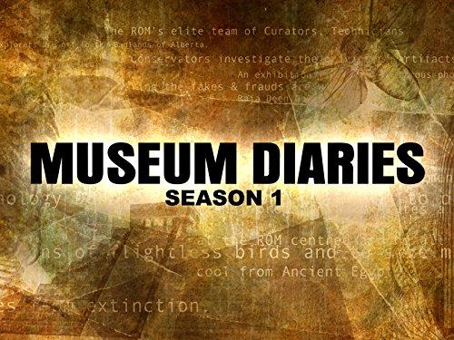 Museum Diaries on Amazon Prime Video UK