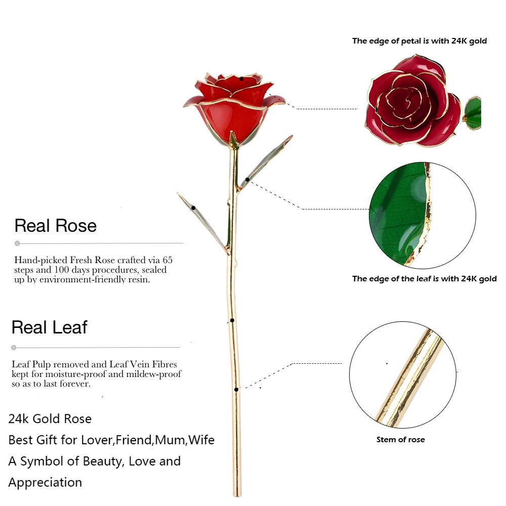 Amazon kluckyi valentines day 24k gold dipped real rose amazon kluckyi valentines day 24k gold dipped real rose elegant flower wedding decor artificial flowers with gift box home decoration for lover izmirmasajfo