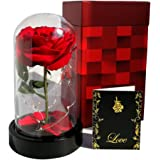 """Homeseasons """" Beauty and the Beast """"- Enchanted LED Red Rose in Glass Dome"""