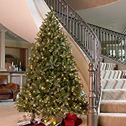 Downswept Douglas Fir Medium Pre-lit Christmas Tree