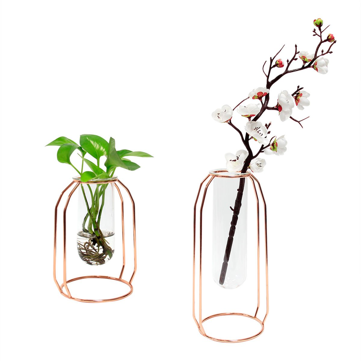 Bizzoelife Metal Frame Glass Vases Set of 2 Creative Plant Flower Holder for Home Office Party Decor