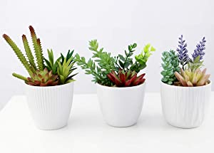 Omygarden Artificial Succulents with White Plastic Pots, Set of 3, Fake Plants Decoration for Home and Office