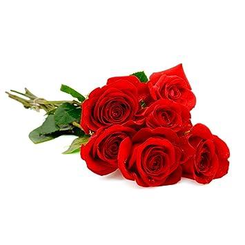 Ramo De 6 Rosas Rojas Naturales Entrega 24 Horas Amazones Jardín