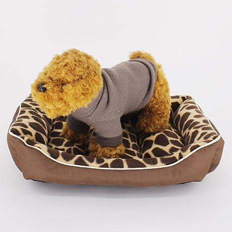 Lozse Pet Beds Ropa se Puede Lavar pequeño Perro caseta Gato ...