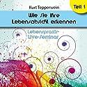 Wie Sie Ihre Lebensabsicht erkennen: Teil 1 (Lebenspraxis-Live-Seminar) Hörbuch von Kurt Tepperwein Gesprochen von: Kurt Tepperwein