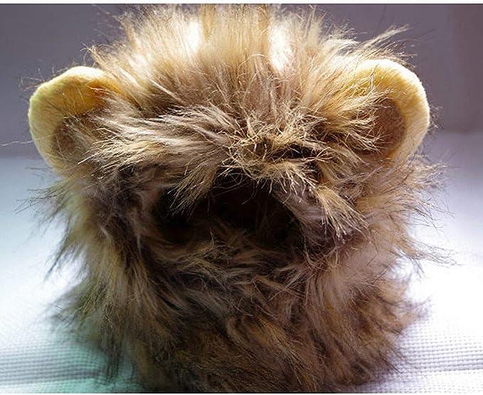 Bocotoer - Disfraz de Melena de león para Gatos: Amazon.es: Hogar
