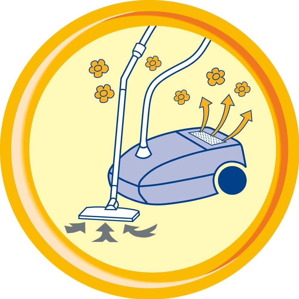 Staubsaugerduft | Swirl Staubsauger Deo-Sticks Citrus