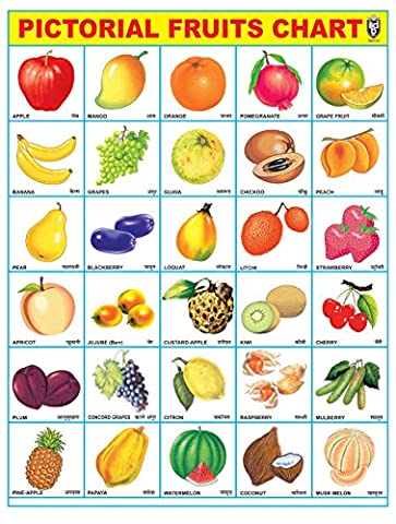 IBD Pre-School Toddler's Educational Fruit Chart PVC Laminated Single Side Poster Wall Chart