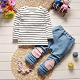 Toddler Kids Clothes Set Baby Boy Girls Outfits Hooded Stripe T-shirt Tops+Pants by Vovotrade (12M, Pink)