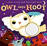 img - for Noisy Touch and Feel: Owl Says Hoot book / textbook / text book