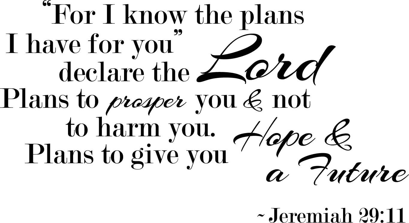 Newclew for I Know The Plans I Have for You, declares The Lord, Plans to Prosper not to harm You, Plans to give You Hope and a Future.- Jeremiah 29:11 Wall Art Sticker Décor Decal ((M) 22''x12'')