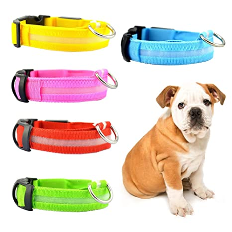Catkoo - Collar con Luces LED para Perro y Cachorro, Carga por USB ...