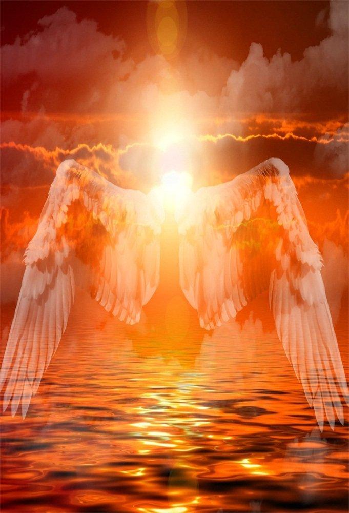 AOFOTO 写真撮影用背景幕 4x6フィート アーティスティックな背景 ドリーミー天使の羽 美しい空の日の光 雲 海 子供 女の子 ポートレート 写真 スタジオ小道具 ビニール壁紙   B07BP6XDF8