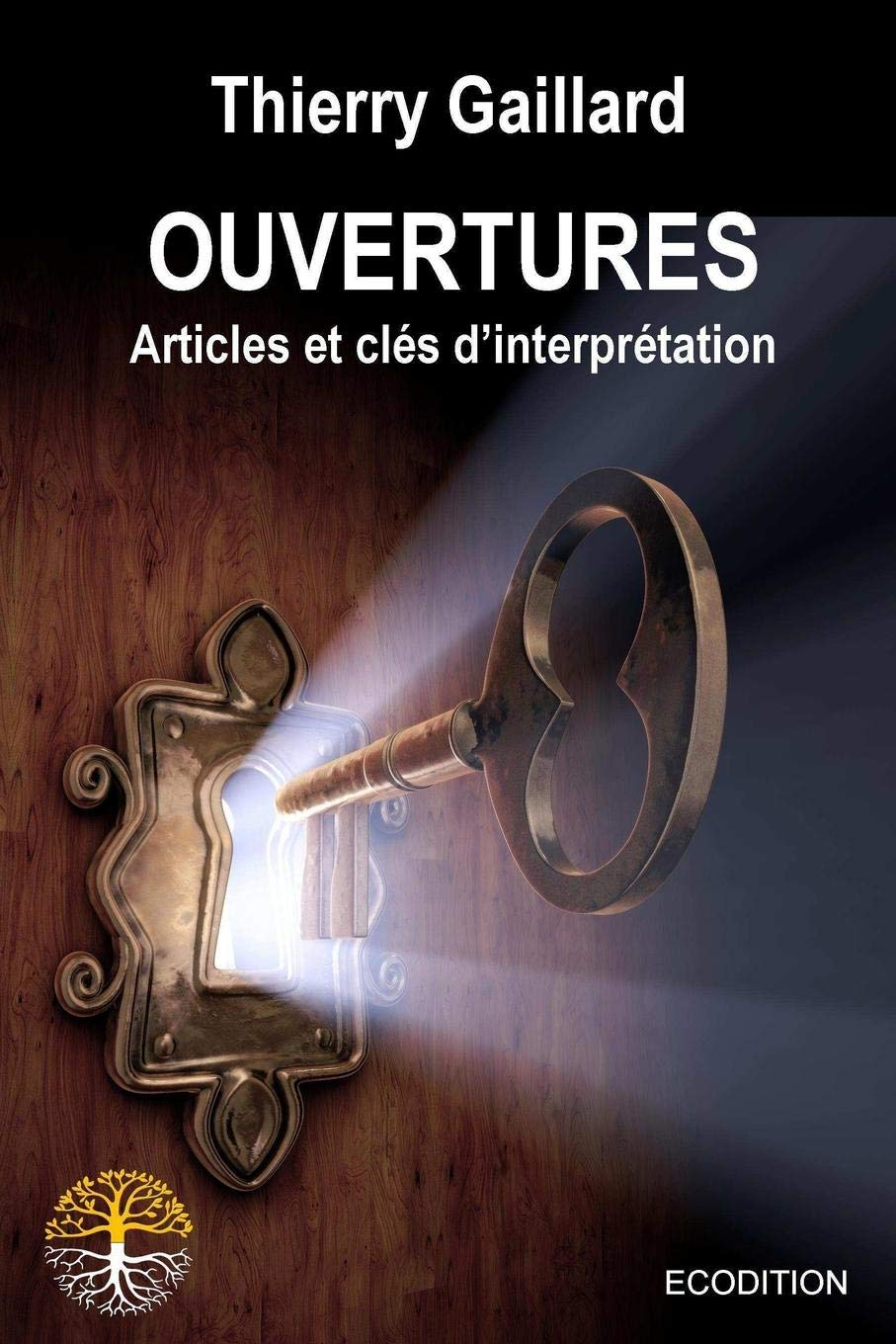 Ouvertures (French Edition) ebook