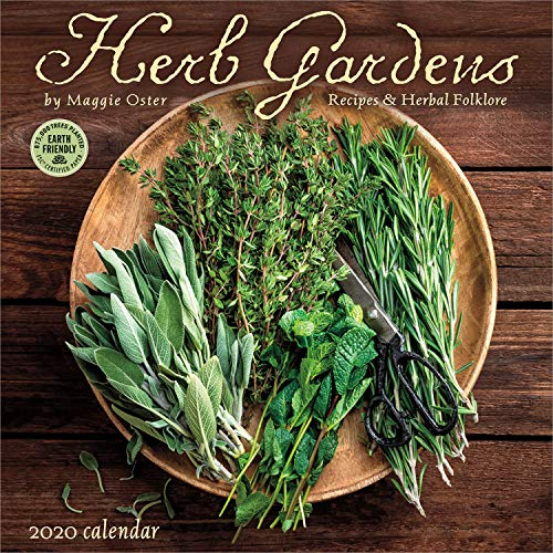 Herb Gardens 2020 Wall Calendar: Recipes & Herbal Folklore by Maggie Oster, Amber Lotus Publishing