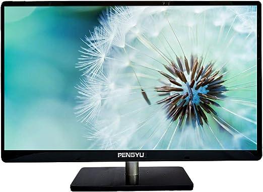 RAPLANC Monitor LED Ultra Delgado HD, entradas VGA, Soporte Ajustable, sin Parpadeo, lo Que lo Hace productividad y Las Aplicaciones Multimedia,20Inch: Amazon.es: Hogar