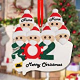 Personalized 2020 Christmas Ornament 1-7 Family Members, DIY Survived Family Customized Christmas Decorative Kit Xmas…