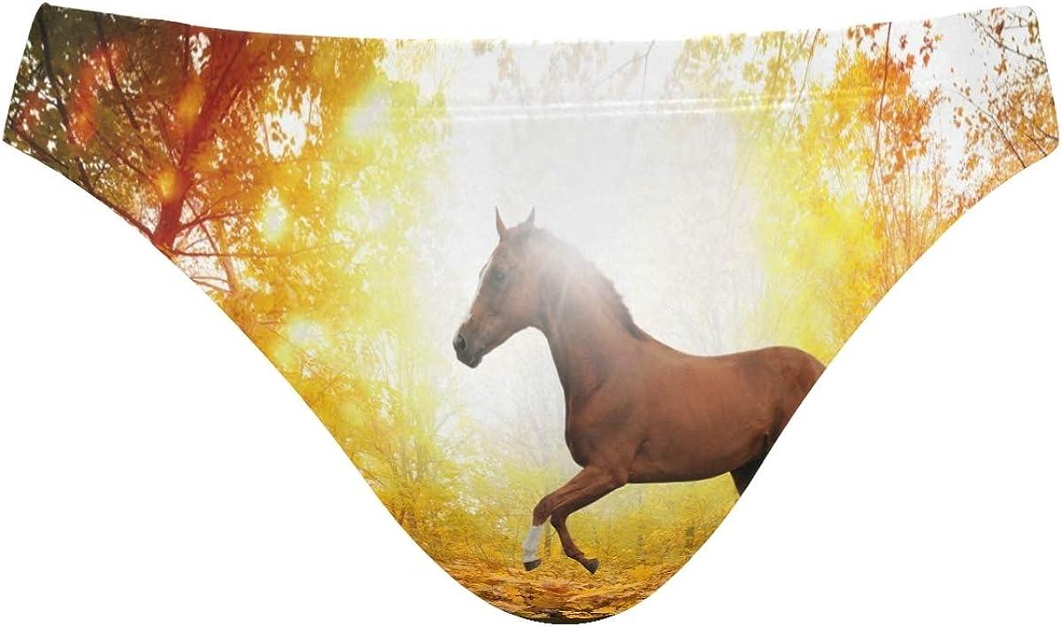 FANTAZIO - Bañador para hombre, diseño de caballo en hoja de ...