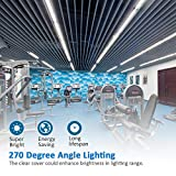 4FT LED Shop Lights - T8 Integrated LED Tube Light