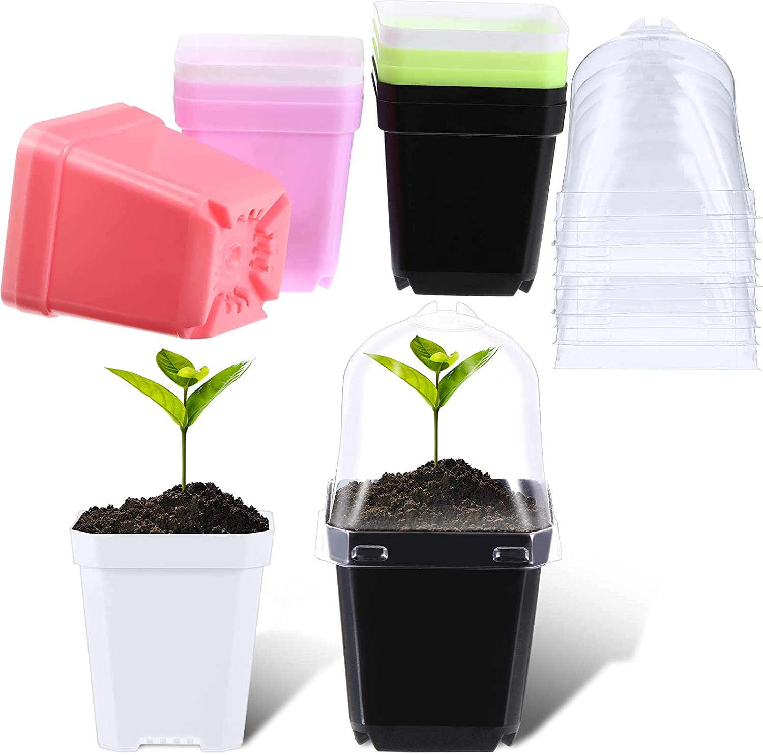 10 Pieces Square Plastic Plant Pot Plant Nursery Flower Pot with 10 Pieces Humidity Dome Plastic Seedling Pot Colorful Seedling Nursery Transplanting Planter Container for Indoor Outdoor Garden Office
