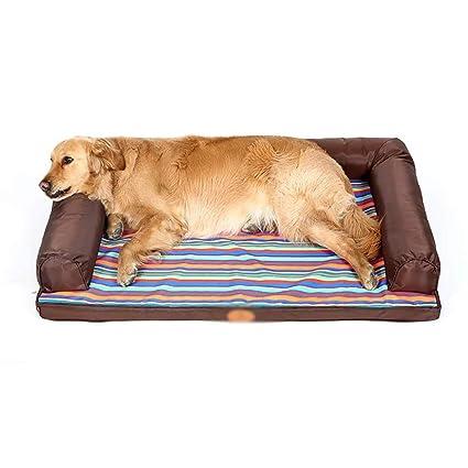 Amazon.com: ZXL Sofa-Style Pet Bed, Orthopedic Dog and Cat ...