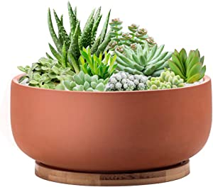 EPFamily Terracotta Shallow Succulent Planter, 8 Inch Planter Pot with Bamboo Tray, Clay Flower Pot Indoor and Outdoor Planter with Drainage Hole, Terracotta