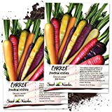Seed Needs, Rainbow Carrot Blend (Daucus carota) Twin Pack of 800...