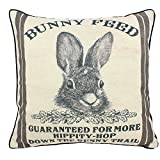 JuniperLab Farmhouse Bunny Vintage Easter Retro Primitive Old Feed Sack Cotton Linen Throw Pillow Covers Rabbit Hare Cushion Cover Shams 16'' Square French Country Shabby Chic