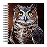 ECOeverywhere Great Horned Owl Picture Photo Album, 18 Pages, Holds 72 Photos, 7.75 x 8.75 Inches, Multicolored (PA12471)