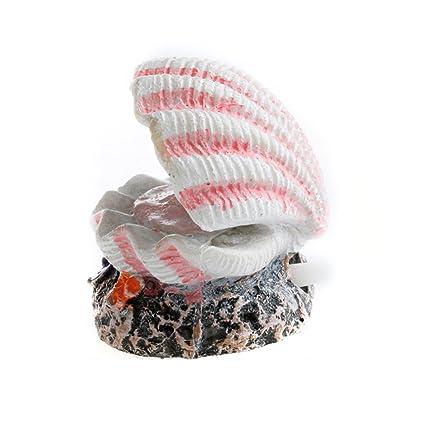 Rocita Fashion Pearl Shell - Figura Decorativa para Acuario con Forma de Coral de volcán y