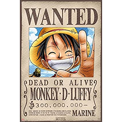 Amazoncom One Piece Wanted Luffy Poster Prints Posters