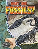 What Are Fossils?, Natalie Hyde, 0778772195