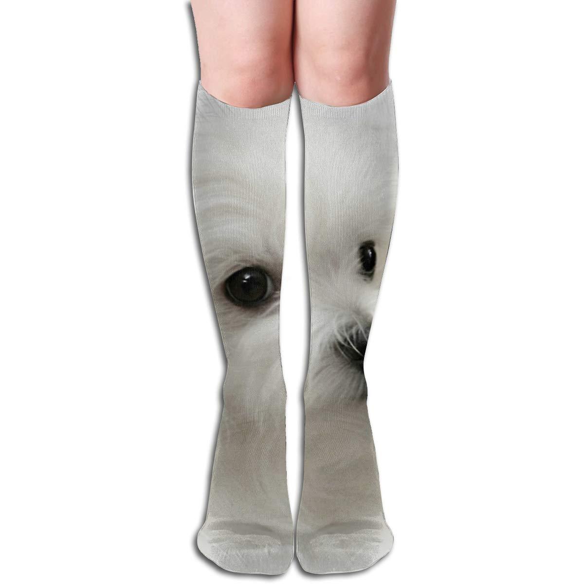 Hermes The MalteseFashion Athletic Socks Knee High Socks For Men/&Women All Sport Holiday