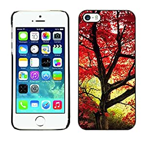 "For Apple iPhone 5 / 5S , S-type Hojas de arce rojas"" - Arte & diseño plástico duro Fundas Cover Cubre Hard Case Cover"
