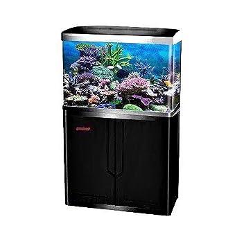 JAJALE 55 Gallon Aquarium Fish Tank LED Light Pump Freshwater Filter Upright Fishtank Stand Bundle Curved