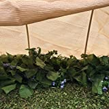 Shatex Plant Protection Breathable Reusable Plant Cover with Grommets 12x16ft Tan