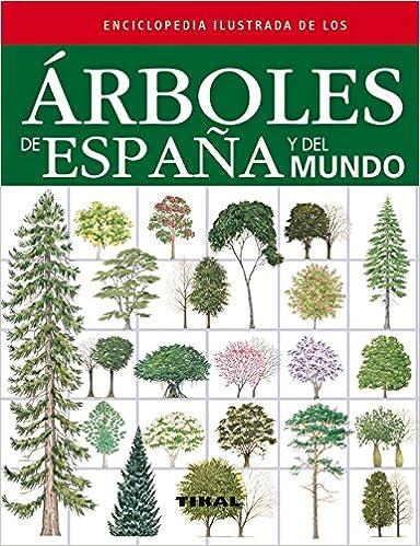 Árboles de España y del mundo Enciclopedia ilustrada: Amazon.es ...