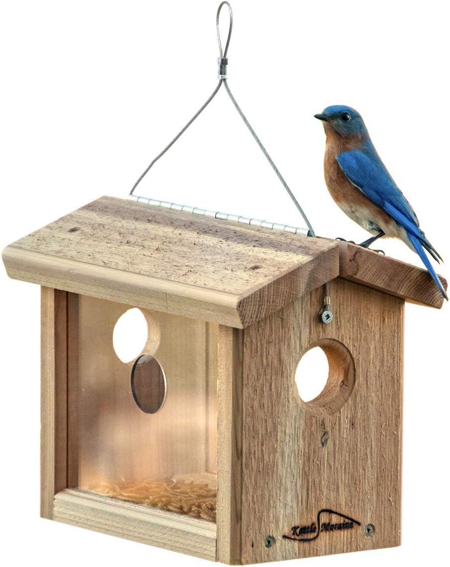 Kettle Moraine Cedar Bluebird Mealworm Feeder